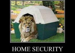 guard lion home security